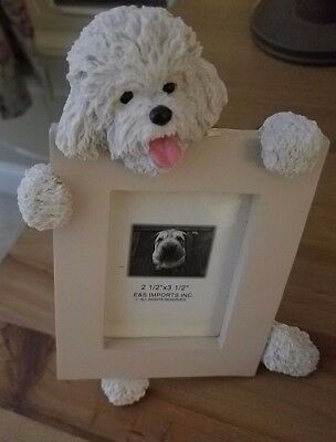 """BICHON FRISE PICTURE FRAME - Brand New - 2 1/2"""" x 3 1/2"""""""