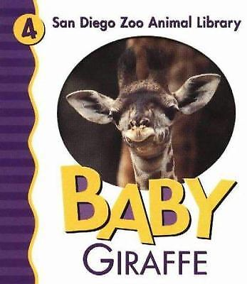 Baby Giraffe by Patricia A. Pingry