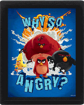 Angry Birds - Why So Angry - fertig gerahmtes 3D Poster - Größe 20x25 cm