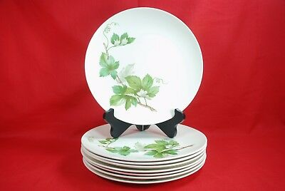 """Knowles GRAPEVINE Dinner Plates (Set of 8) 10"""" Pattern # X 2246-0"""