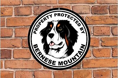 Property protected by Bernese Mountain guard dog yard fence round metal sign #C