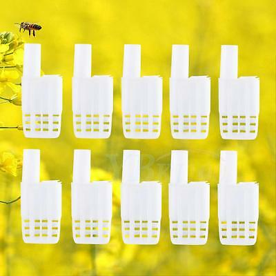 10pcs Beekeeping Rearing Queen Bee Hair Roller Plastic Cages Beekeeper Tools Kit