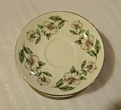 Vintage Bone China Saucer by Crown, Staffordshire, England - Pear Blossoms