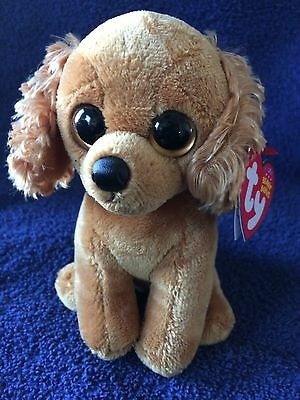 Ty Beanie Baby COPPER the Dog TY Store Exclusive MWMT