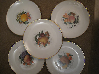 Set of 5 Winterling plates Western Germany Bavaria nuts and fruits
