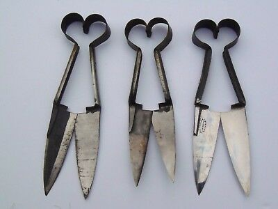 Antique Topiary Sheep Shears Garden Scissors Clippers Lot of 3 Signed