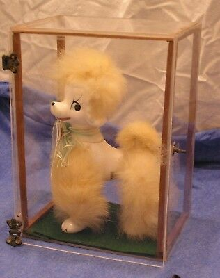 Collectible porcelain poodle mid century by BRINNCO Japan w/ display case