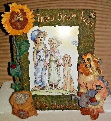 "1E BOYDS BEARS PICTURE FRAME 1998 LIDDY PEARL  ""They Grow Just Like Weeds!!!"""