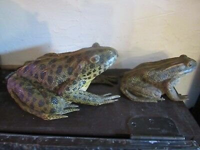 Large Antique Realist Carved And Painted Wood Frogs, Life Like Detail