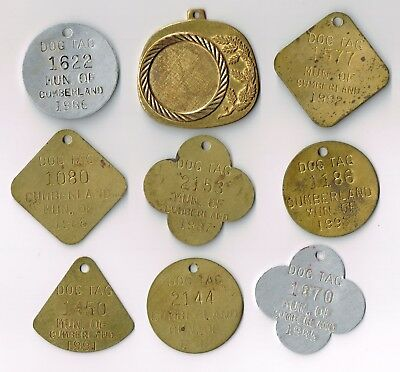 Lot Of Various Vintage Dog Tags