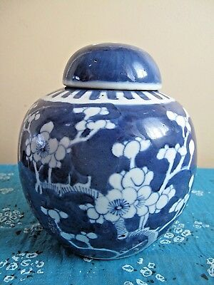 ANTIQUE 19thc CHINESE PRUNUS BLOSSOM GINGER JAR DOUBLE CIRCLE MARK KANGXI