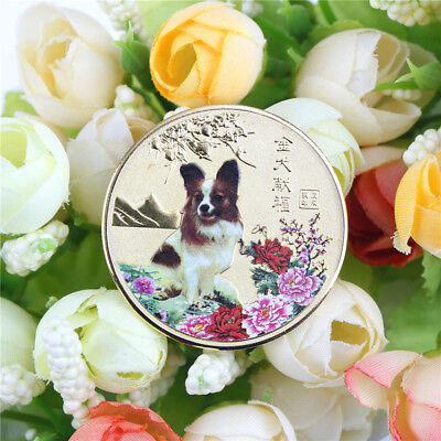 1PC year of the dog gold chinese zodiac 2018 souvenir coin tourism gift Mpn