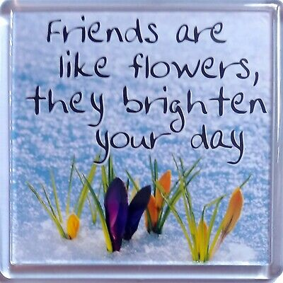 "History & Heraldry Sentiment Fridge Magnet ""Friends are like flowers they bright"