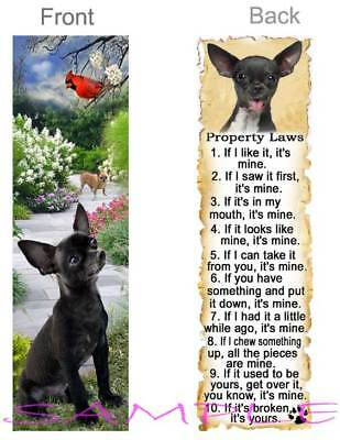 CHIHUAHUA DOG RULES Property LAWS BOOKMARK BLACK Brown Tan CHI Book Art Card