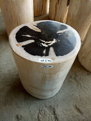 20 Ton Mix Product Indonesia Petrified Wood Stools Top Side Table Slab Sink