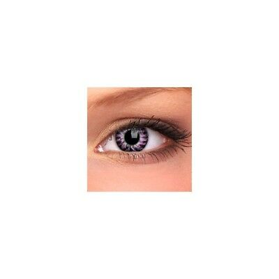 Lentilles contact couleur violet WM225 - contact color lenses