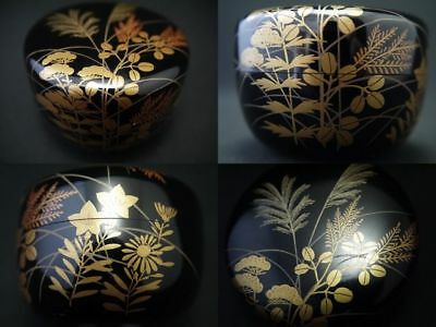 Japanese Lacquer Wooden Tea Caddy AUTUMN FLOWERS makie small Hira-Natsume (1215)