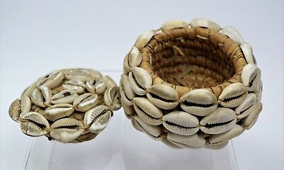 Small covered basket African Cowrie Shell Natural Materials
