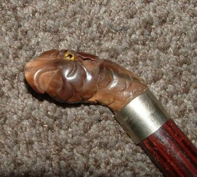 ANTIQUE CARVED BIRD HEAD CANE WALKING STICK Parrot silver neck wood cane