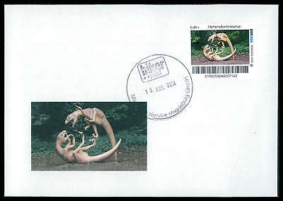 GERMANY DINOSAUR DINOSAURI DINOSAURIER - CUSTOM STAMP - ONLY 2 COVER MADE!! cp14