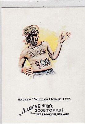 2008 Topps Allen & Ginter Andrew William Ocean Litz Air Guitar Trading Card #283