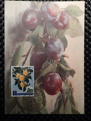 San Marino Mk 1958 Flora Früchte Pflaume Plum Fruits Fruit Maximum Card Mc 7813