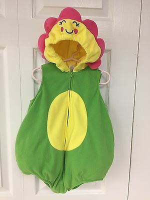 Carter's 24 Month Flower Girls Baby Sunflower Daisy Halloween Costume Dress Up