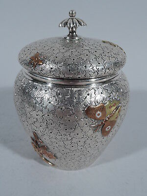 Dominick & Haff Tea Caddy - 10 - American Sterling Silver & Mixed Metal  - 1880