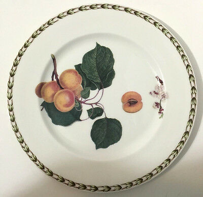 Rare Queen's Royal Horticultural Society Hookers Fruit Apricot Salad Plate EUC