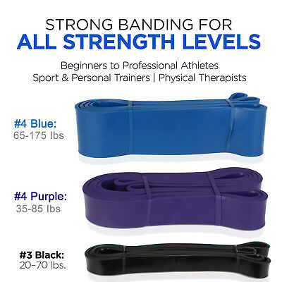 Pull Up Assist Bands - Heavy Duty Resistance Band - Mobility & Powerlifting Band
