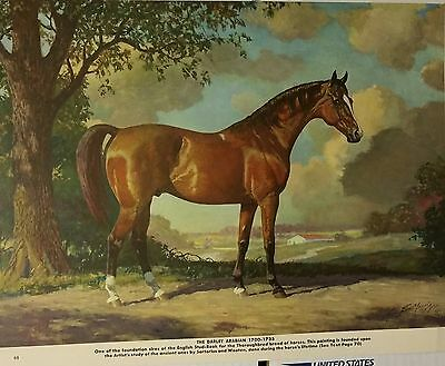 Vintage The Darley Arabian Foundation Sire George Ford Morris 1952 Print