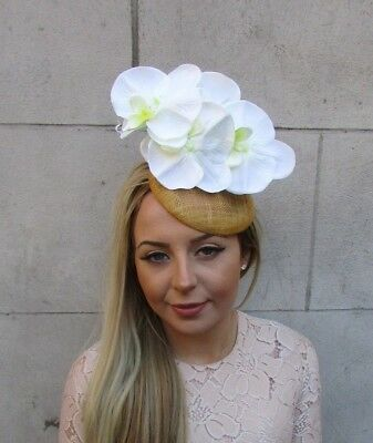 Gold White Cream Orchid Flower Fascinator Pillbox Hat Hair Clip Ascot Races 5174