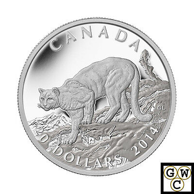 2014 Proof $20 Cougar #2-Perched on a Maple Tree Colour Canada .9999 silver Sile