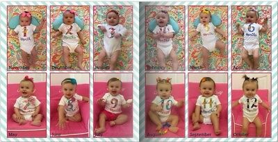 Handmade Monthly Photo Set - Girl/Floral - photo prop,Babybshower Gift