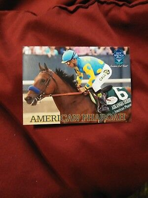 RARE OAKLAWN PARK AMERICAN PHAROAH HORSE RACING TRADING CARD Mint Triple Crown