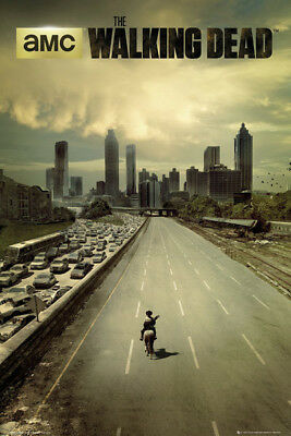 The Walking Dead City Poster
