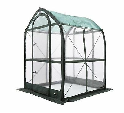 PlantHouse 5 ft. x 5 ft. Pop-Up Greenhouse Home Outdoor Plant Shelter Garden