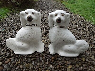 Victorian Staffordshire Spaniel Dogs, Large Pair, 19th Century