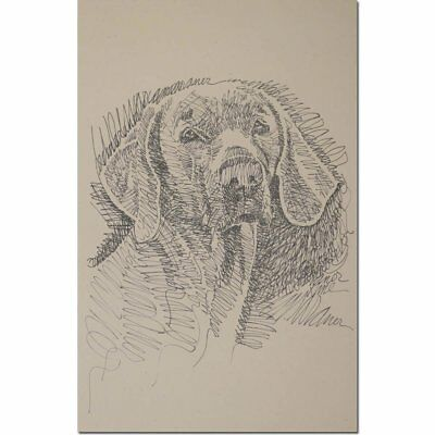 Weimaraner Style 1 Personalized Lithograph by Stephen Kline