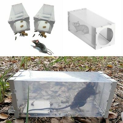 Rat Live Trap Cage Animal Mice Rodent Humane Control Catch Bait Hamster Mouse