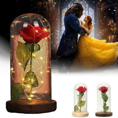 Beauty and The Beast Rose Glass Lamp Dome Valentine Led Red Rose Lighted Gift