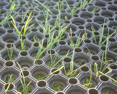 Heavy Duty Rubber Grassmat Ground Protection Flooring Golf Course Zoo Horse Yard