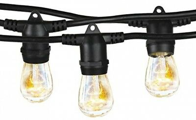 Brightech Ambience Pro Commercial Grade Outdoor Light Strand Non Hanging 48 ft