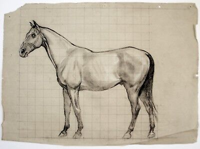 Kathleen Margaret Pearson (1898-1961) Charcoal drawing of a horse. Slade, R.A.