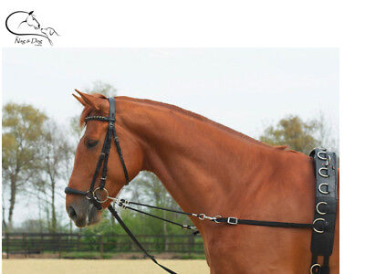 Busse Nylon Elastic Adjustable Side-Reins Lunge Training Aid FREE DELIVERY
