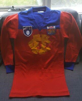 Early 90's Fitzroy Lions Vintage guernsey