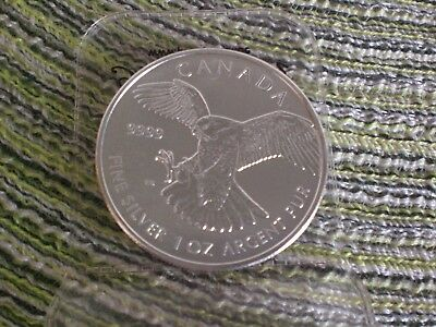 Kanada 5 Dollars Silbermünze 2014 Birds of Prey Falcon Wanderfalke 1 OZ