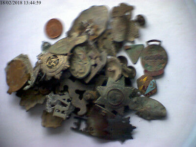 Mixture of military badges, badges? Metal detecting finds