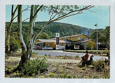 C5093cgt Australia NSW Ski Rider Motel Island Bend Snow Mountains postcard