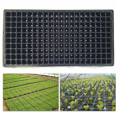 200 Cells Plant Seeds Grow Box Insert Propagation Nursery Seedling Starter Tray